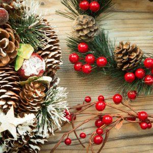 Fermeture de la BU pendant les vacances de Noël